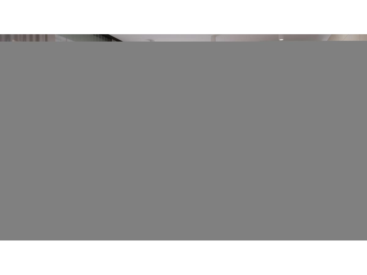 ZALA GEO ZBD62163 BEZ MOZAIK (dekor) 20x60, 1.2m2